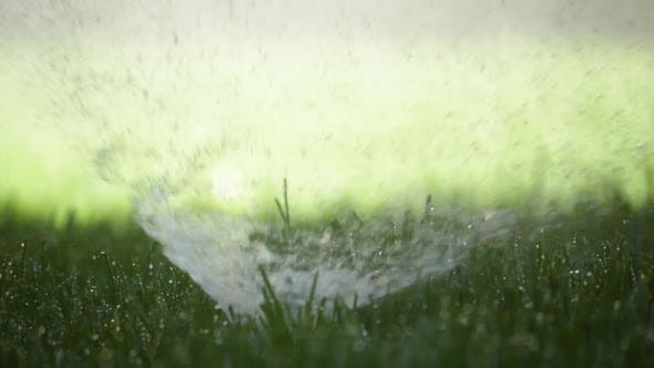 Cover Image for Water Sprinkler