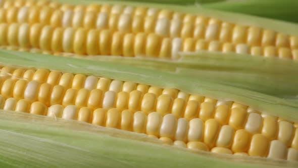 Thumbnail for Frischer Mais auf dem Kolben