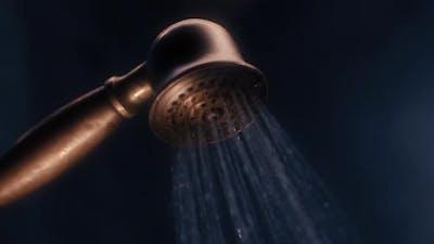 Golden Shower Head is Turns on