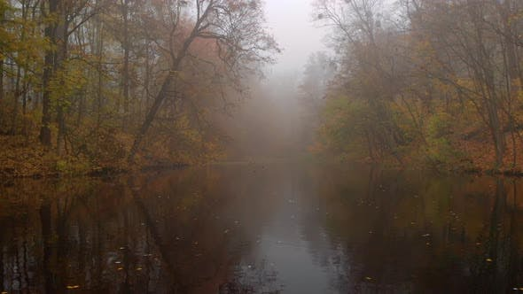 Thumbnail for Aerial Drone Shot of Colourful Trees Over Small Lake in Fog in Autumn Park