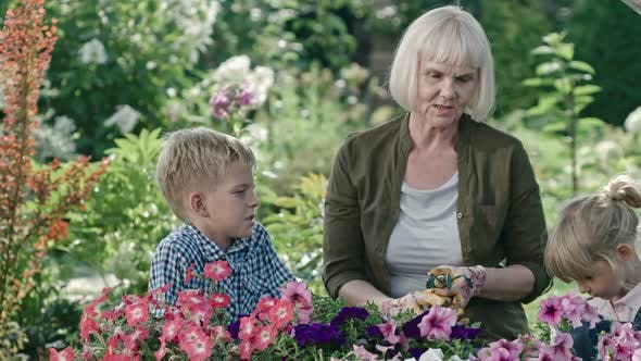 Cover Image for Senior Lady Gardening with Grandchildren