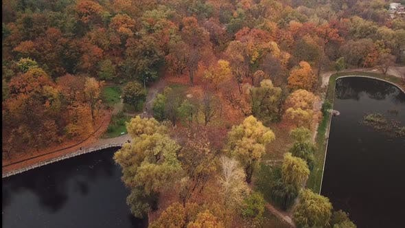 Drone Flight Over a Park with Two Lakes, Autumn with Beautiful Foliage. It's a Nasty Day.