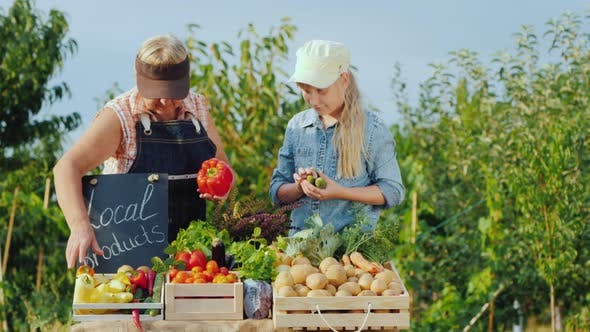 Cover Image for Grandmother and Granddaughter Lay Vegetables on the Counter of the Farmers Market