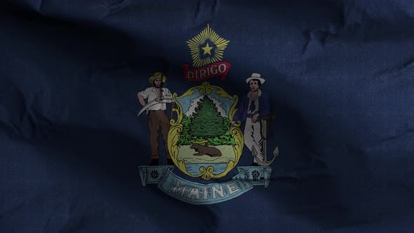 Maine State Flag 4K