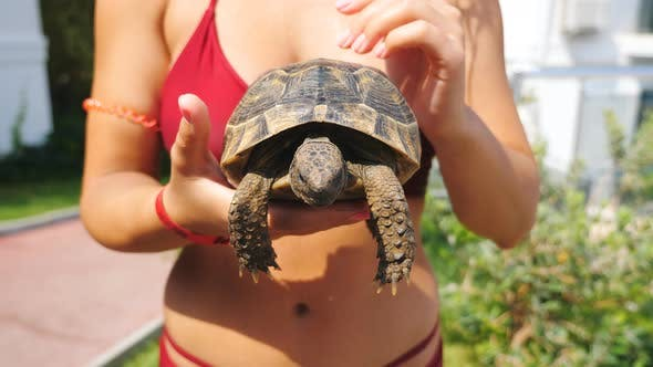 Thumbnail for Unrecognizable Girl in Red Swimsuit Holding Little Turtle in Her Palms. Young Female Tourist Resting