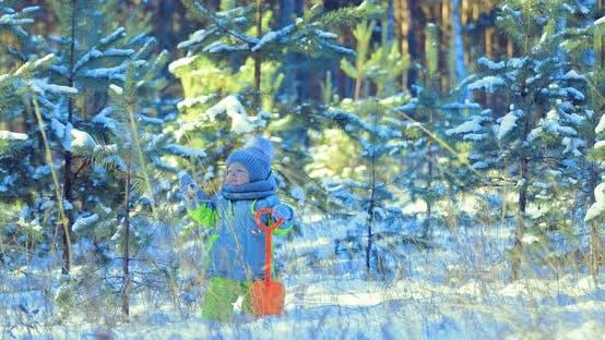 Kind schaut auf den Firtree