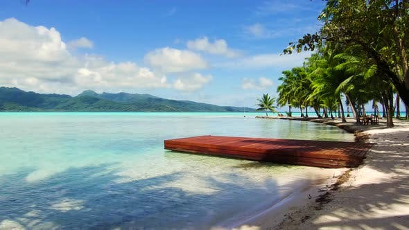 Thumbnail for Wooden Pier on Tropical Beach in French Polynesia 24