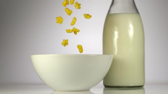 Thumbnail for Kid Corn Flakes Dish Milk Slow