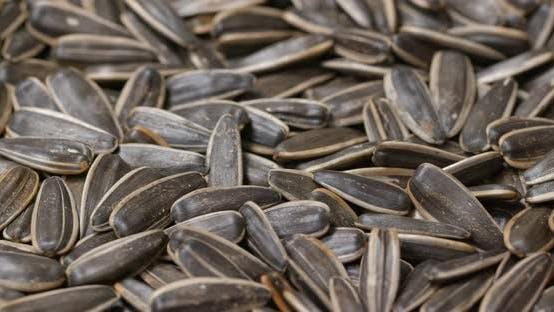 Thumbnail for Spinning of Sunflower seeds