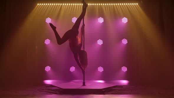 Thumbnail for Beautiful Pole Dance Performed By an Athletic Young Female. Silhouette of an Attractive Body