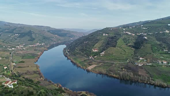 Aerial View of Terraced Vineyards in Douro Valley