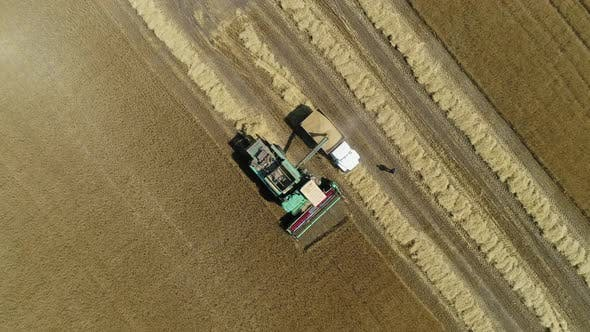 Thumbnail for Aerial Drone Footage. Harvester Spills Grain Into a Truck. Top View