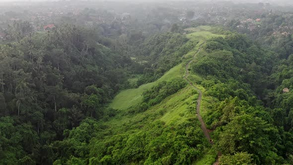 Thumbnail for Aerial View Jungle, Rainforest In Mountains. Tropical Forest With Trail Artist Ubud , Trees, Green