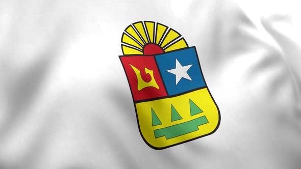 Quintana Roo Flag (Mexico)
