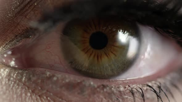 Thumbnail for Up close view of woman's hazel eye