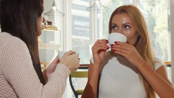 Thumbnail for Beautiful Happy Woman Enjoying Coffee with Her Best Friend, Chatting Joyfully