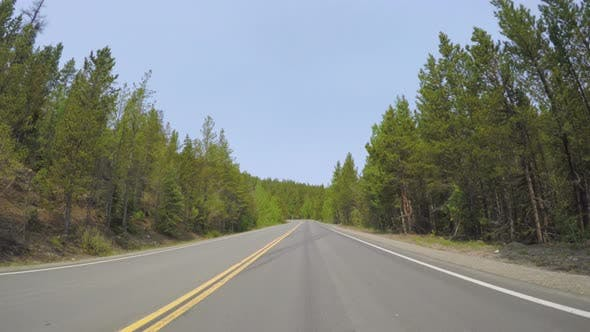 Car driving through alpine forest on Mount Evans-POV point of view