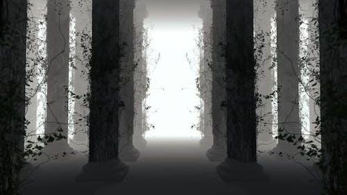 Column 04