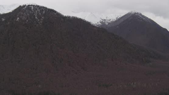 Luftaufnahme mit Hubschrauberaufnahme von Alaska Berghang, über Wäldern, zeigt Berge, Drohne aufnahmen