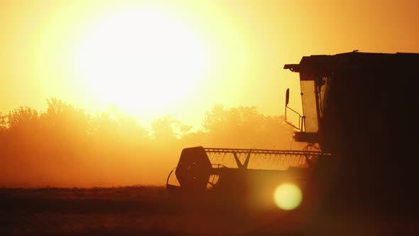 Thumbnail for Big Combine Harvester with a Rotating Thresher Moving at Golden Sunset in Slo-mo