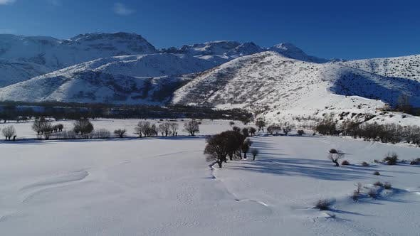 Cover Image for Winter Valley