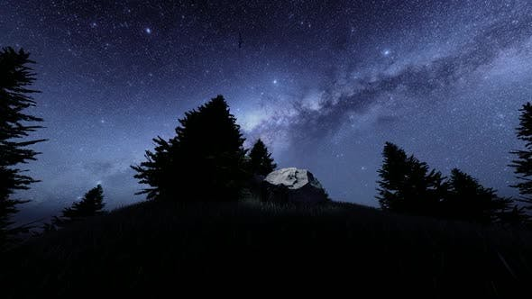 Thumbnail for Forest and Night Milky Way Views