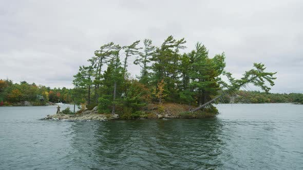 Wind swept pine trees on granite bedrock island