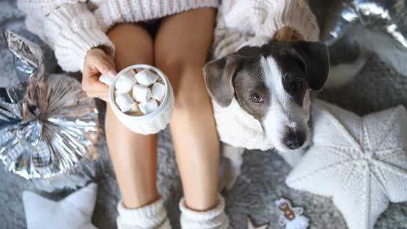 Thumbnail for Woman Legs In Knit Socks Drinking Cocoa With Marshmellow With Dog. Cozy Hygge