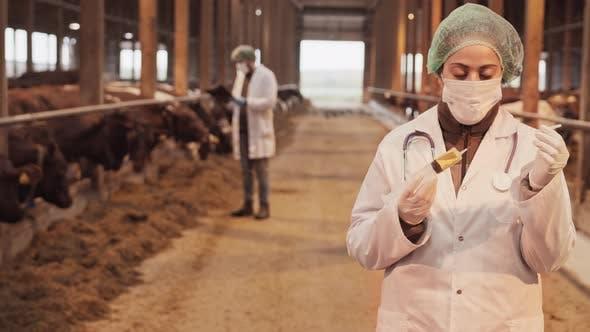 Ärztin mit Spritze auf Bauernhof
