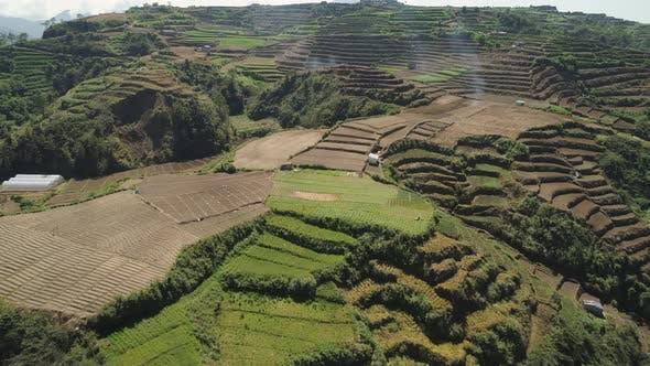 Ackerland in einer Gebirgsprovinz Philippinen, Luzon