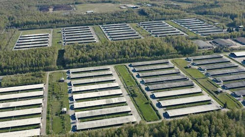 Aerial View of Poultry Farm