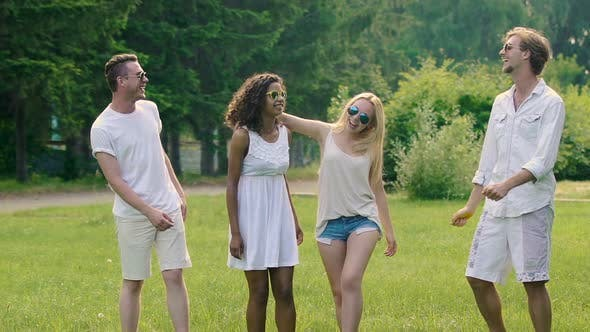 Cover Image for Young Laughing Teenage Company Entertaining Outdoors, Super-Slow Motion