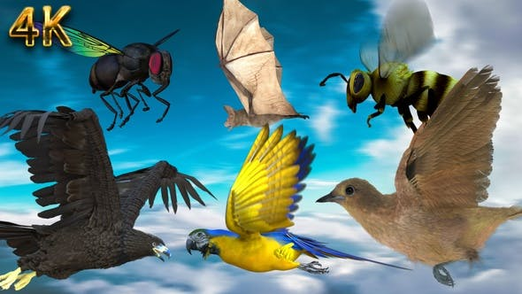 6 Animals Flying Pack