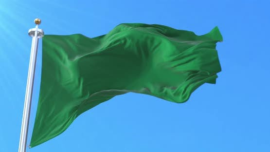 Beni Department Flag, Bolivia