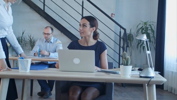 Thumbnail for Group of business people working together in creative office