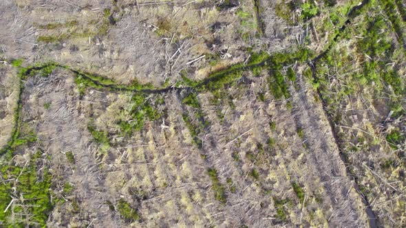 Deforestation of Land Seen From An Aerial View