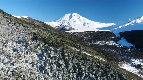 Thumbnail for Sunny Snow Covered Trees Aerial Drone Flyover Towards Lonquimay Volcano And Corralco