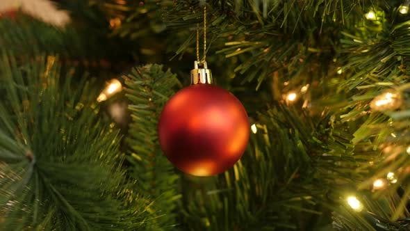 Thumbnail for Red decorative bauble on the branch 4K 2160p 30fps UltraHD footage - Matte color decorative  ornamen