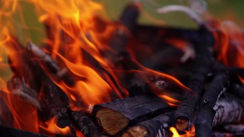 Fire flame in burning wood
