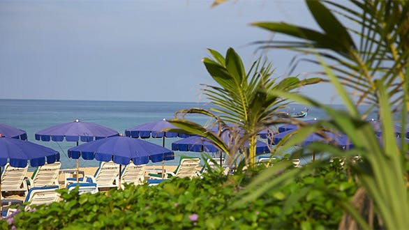 Thumbnail for Beach