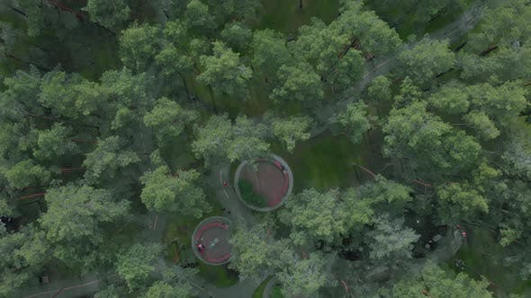 Thumbnail for Green city park with pine trees, footpaths, benches and people walking around and resting