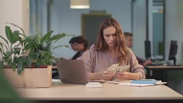 Concentrated Woman Counting Money. Business Woman Checking Cash and Budget
