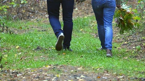 Thumbnail for Walking