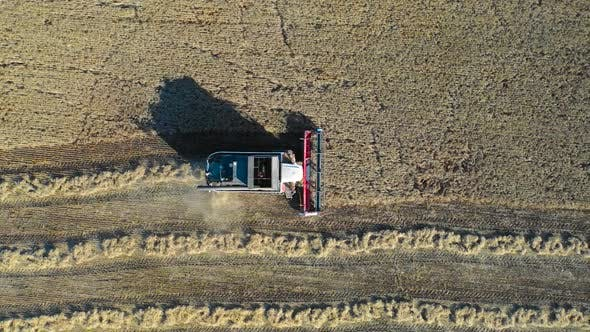 Thumbnail for Aerial View of Combine Harvester Harvesting Ripe Corn on Harvest Field