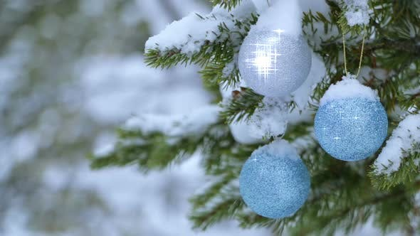 Thumbnail for Christmas Balls are Shining on the Snow-Covered Spruce