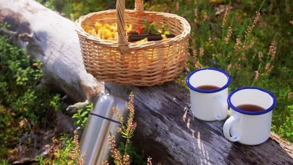 Pilze im Korb und Tassen Tee im Wald