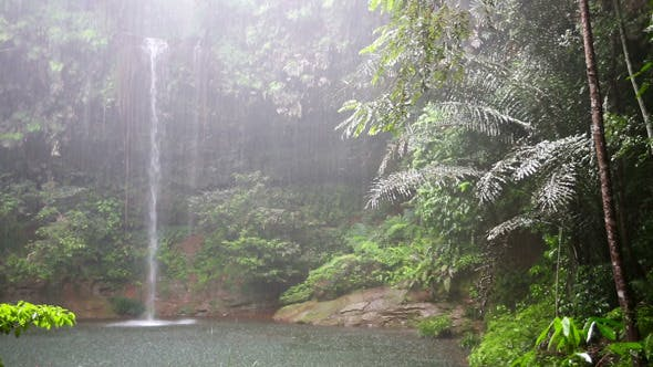 Thumbnail for Waterfall At Borneo Rainforest