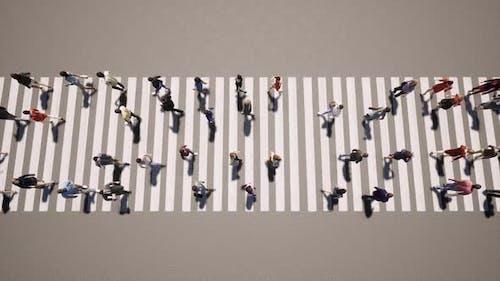 Pedestrian People Transition Zebra Business Concept