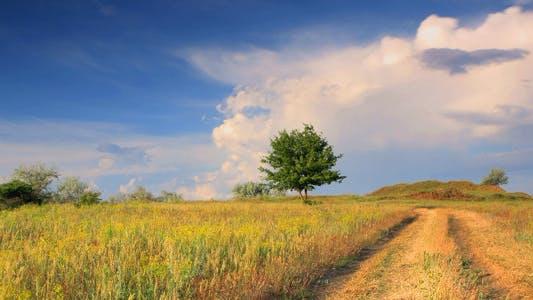 Cover Image for Rural Landscape