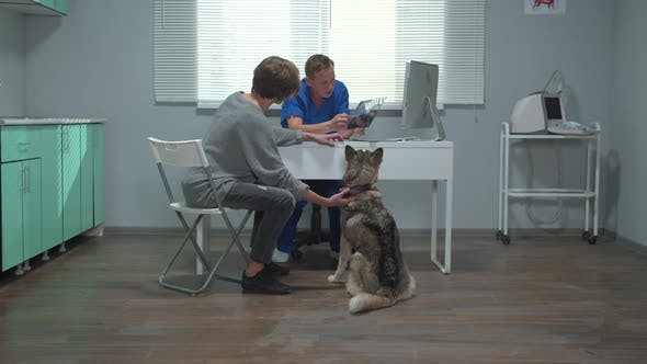 Man Sits with Husky in Cabinet, Vet Explains X-ray of Dog